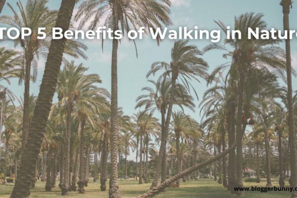Benefits of walking in nature feature image