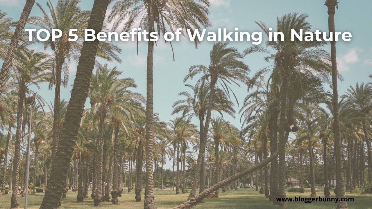 TOP 5 Benefits of Walking In Nature