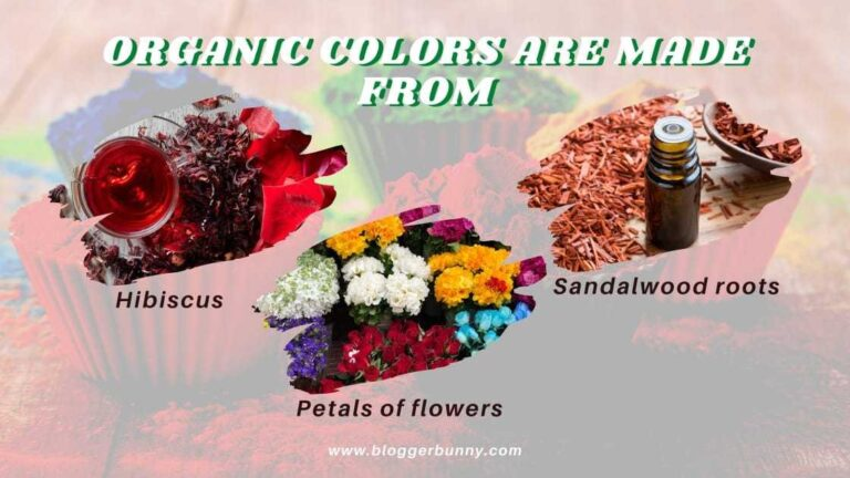 organic colors for holi