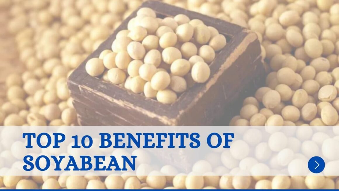What are the 10 benefits of Soybean?